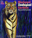 Blackpool Zoo Guide - Tiger