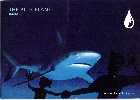 Blue Planet Aquarium 2000 - Shark