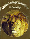 Linton Zoological Gardens Guide 1981 - African Lion