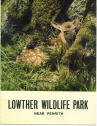 Lowther Wildlife Park Guide 1970 - Deer Fawn