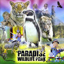 Paradise Park Guide 2008 - Montage of the Park's animals and activities