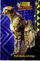 Africa Alive! 1999 - Cheetah
